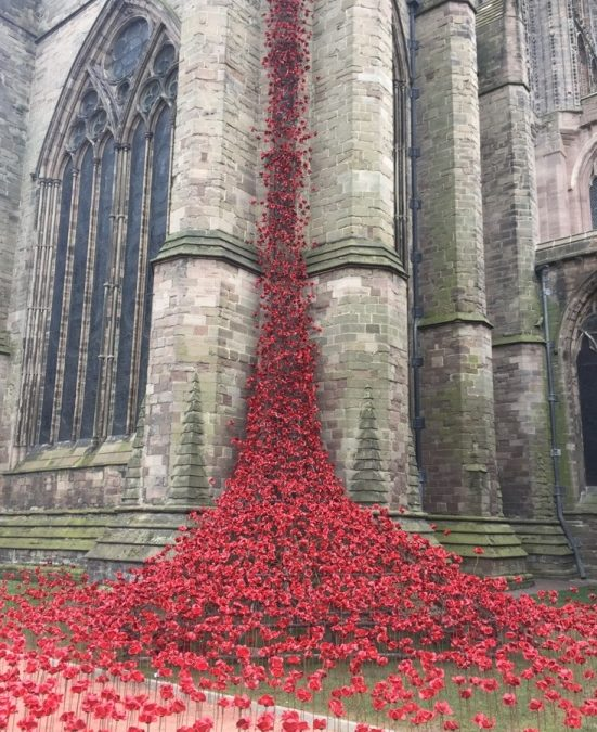 Free Poppies Postcard – Hereford Cathedral Weeping Window Installation