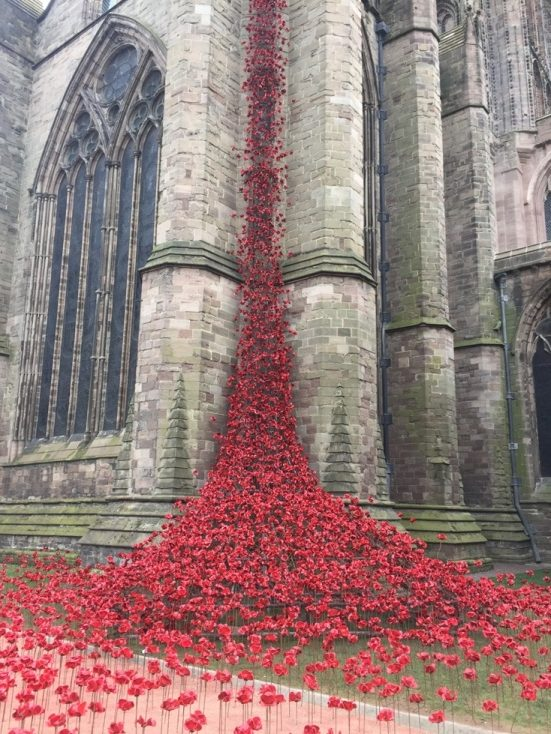 Weeping Window Poppies Hereford Cathedral